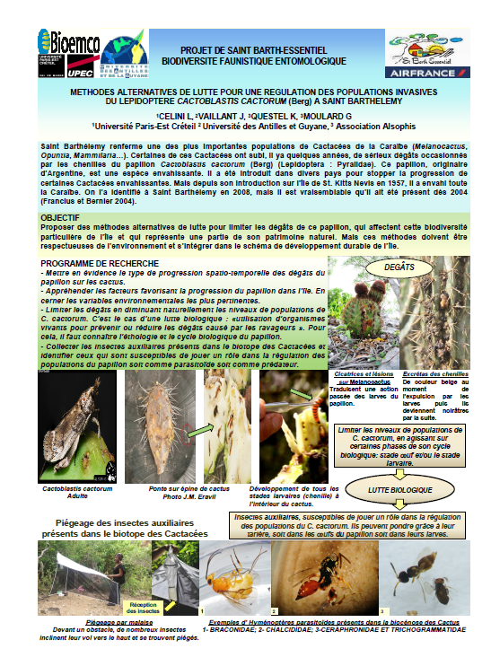SCIENTIFIC REPORT ON ANTS & TERMITES (French)