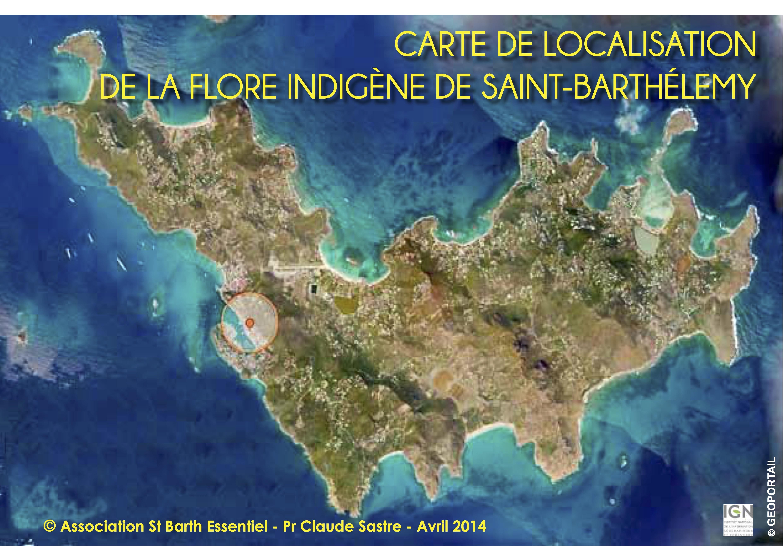 INVENTAIRE DE LA FLORE : LES RESULTATS